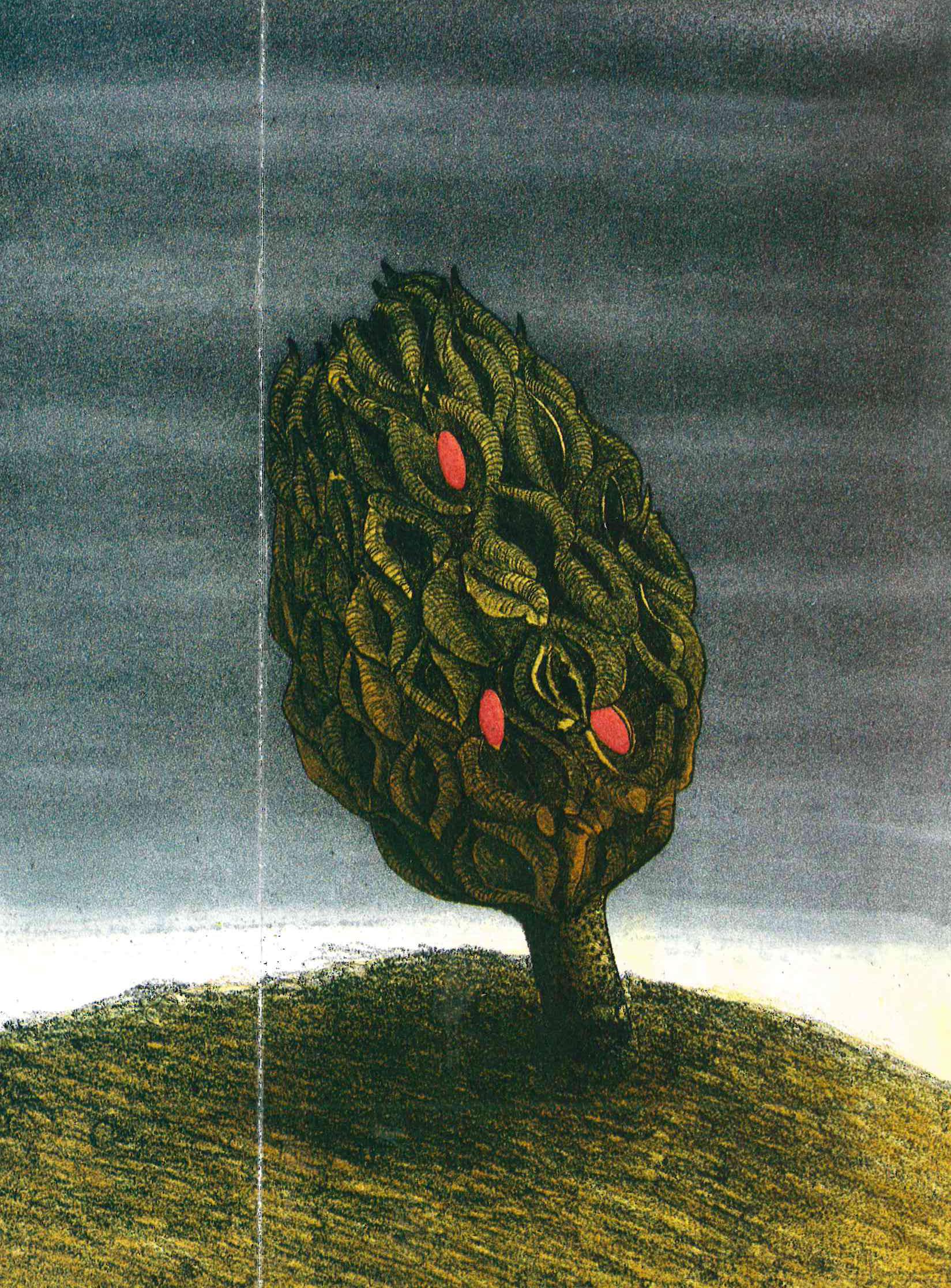 Bild på ett träd